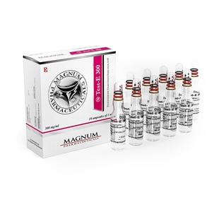 Magnum Test-E 300 in vendita su anabol-it.com in Italia | Testosterone enanthate in linea