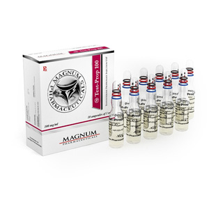 Magnum Test-Prop 100 in vendita su anabol-it.com in Italia | Testosterone propionate in linea
